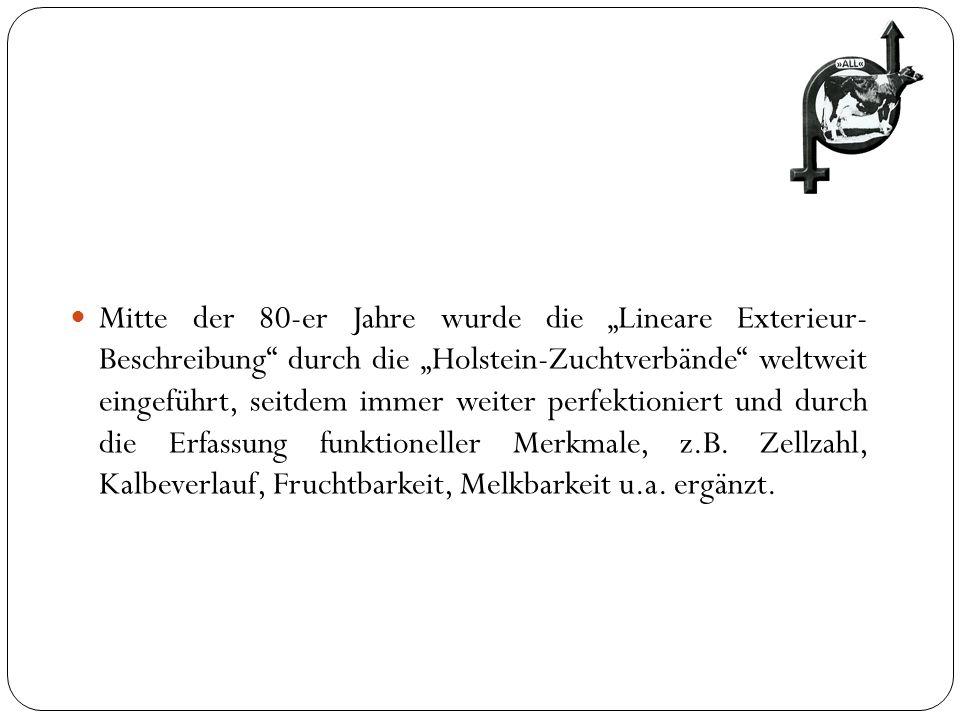 Mitte der 80-er Jahre wurde die Lineare Exterieur- Beschreibung durch die Holstein-Zuchtverbände weltweit eingeführt, seitdem immer weiter perfektioni