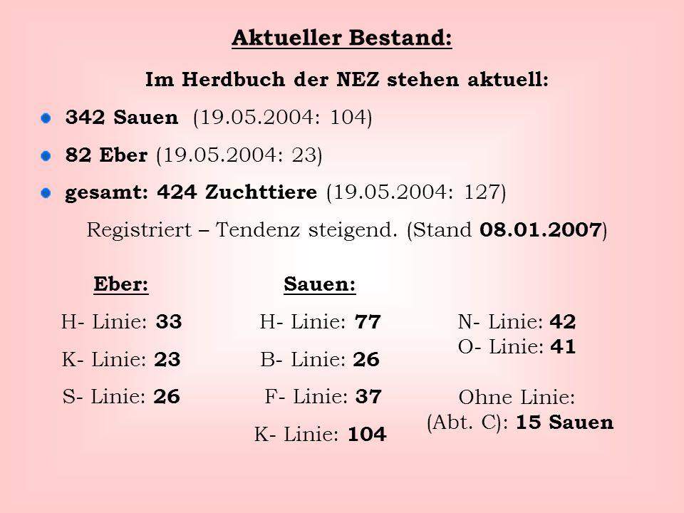 Aktueller Bestand: Im Herdbuch der NEZ stehen aktuell: 342 Sauen (19.05.2004: 104) 82 Eber (19.05.2004: 23) gesamt: 424 Zuchttiere (19.05.2004: 127) R
