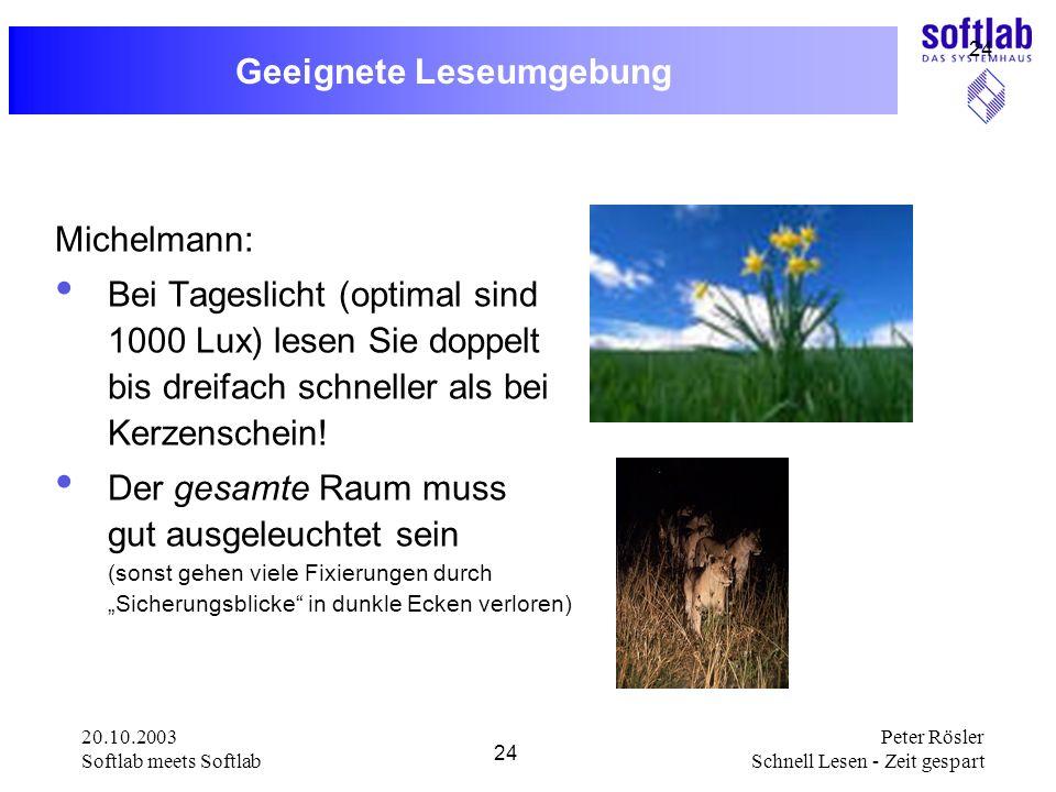 20.10.2003 Softlab meets Softlab 24 Peter Rösler Schnell Lesen - Zeit gespart 24 Geeignete Leseumgebung Michelmann: Bei Tageslicht (optimal sind 1000