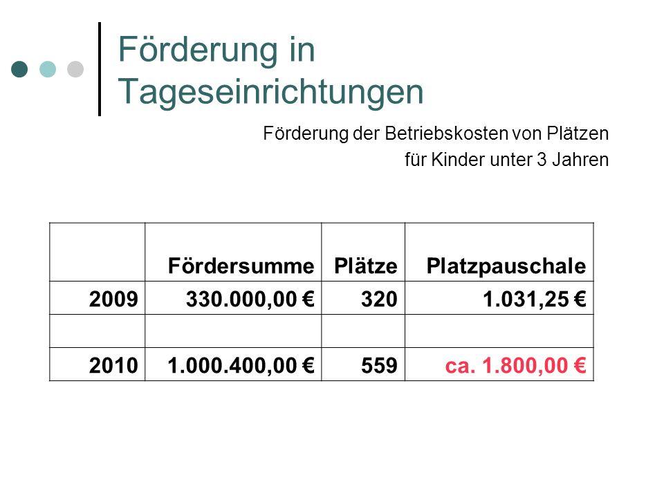 Förderung in Tageseinrichtungen Förderung der Betriebskosten von Plätzen für Kinder unter 3 Jahren FördersummePlätzePlatzpauschale 2009330.000,00 3201