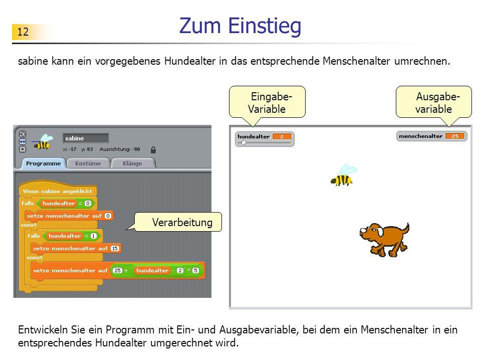 12 Zum Einstieg sabine kann ein vorgegebenes Hundealter in das entsprechende Menschenalter umrechnen. Ausgabe- variable Eingabe- Variable Verarbeitung