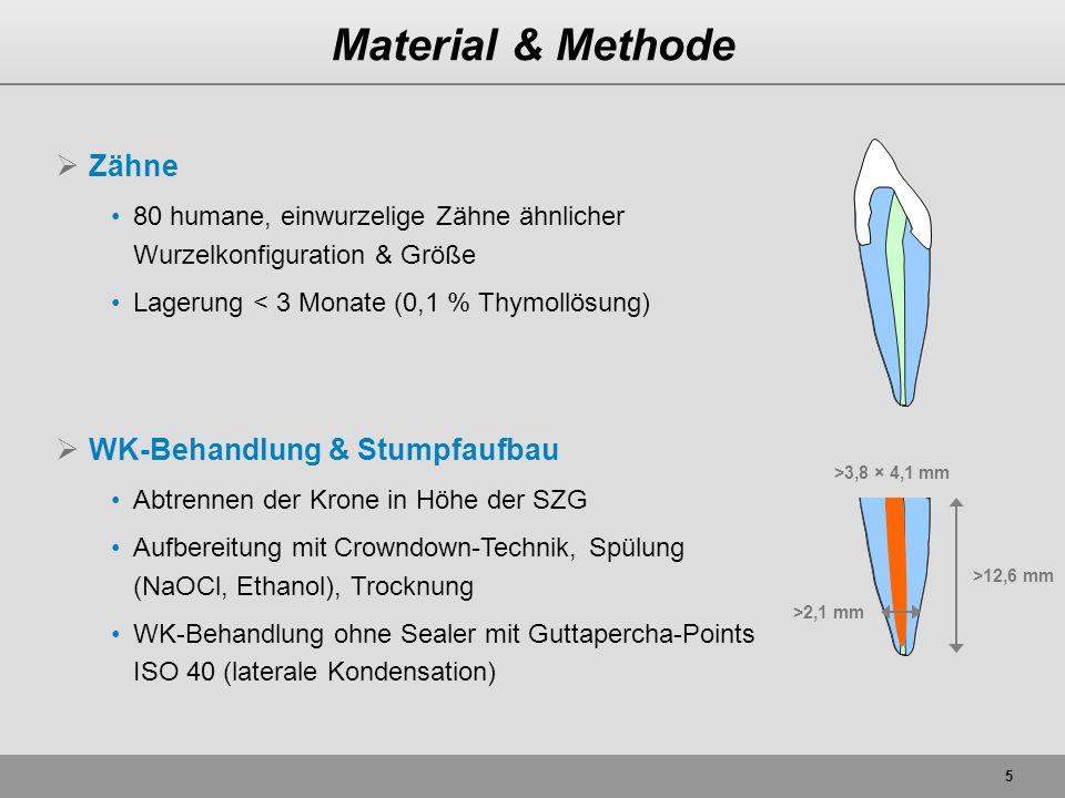 5 Zähne 80 humane, einwurzelige Zähne ähnlicher Wurzelkonfiguration & Größe Lagerung < 3 Monate (0,1 % Thymollösung) Material & Methode WK-Behandlung & Stumpfaufbau Abtrennen der Krone in Höhe der SZG Aufbereitung mit Crowndown-Technik, Spülung (NaOCl, Ethanol), Trocknung WK-Behandlung ohne Sealer mit Guttapercha-Points ISO 40 (laterale Kondensation) >12,6 mm >2,1 mm >3,8 × 4,1 mm