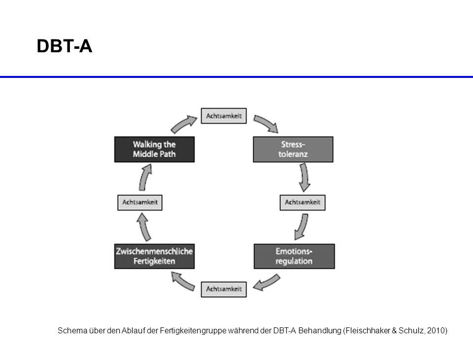 DBT-A Schema über den Ablauf der Fertigkeitengruppe während der DBT-A Behandlung (Fleischhaker & Schulz, 2010)