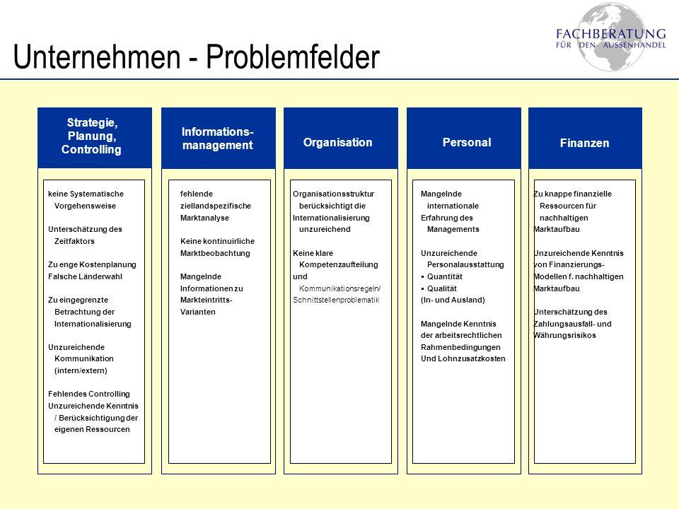 Informations- management OrganisationPersonal Finanzen Strategie, Planung, Controlling keine Systematische Vorgehensweise Unterschätzung des Zeitfakto