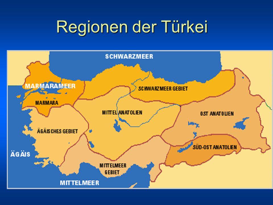 Überblick über das Güneydoğu Anadolu Projesi GAP Das Güneydo u-Anadolu-Projesi (GAP) ist ein integriertes Entwicklungsprojekt, das neben dem Bau von insgesamt 22 Staudämmen und 19 Energiegewinnungsanlagen, die einmal 27,4 Mrd.