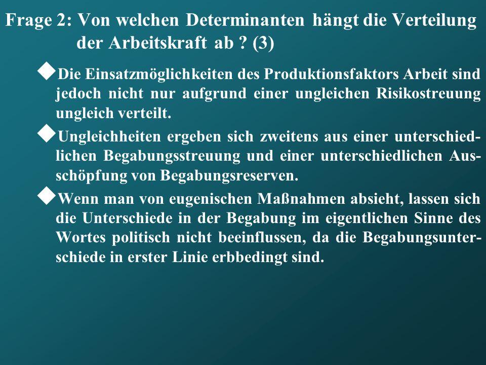 Frage 2: Von welchen Determinanten hängt die Verteilung der Arbeitskraft ab .