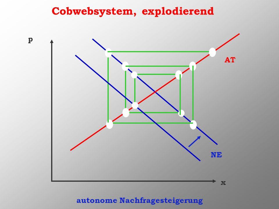 Cobwebsystem, explodierend x p AT NE autonome Nachfragesteigerung