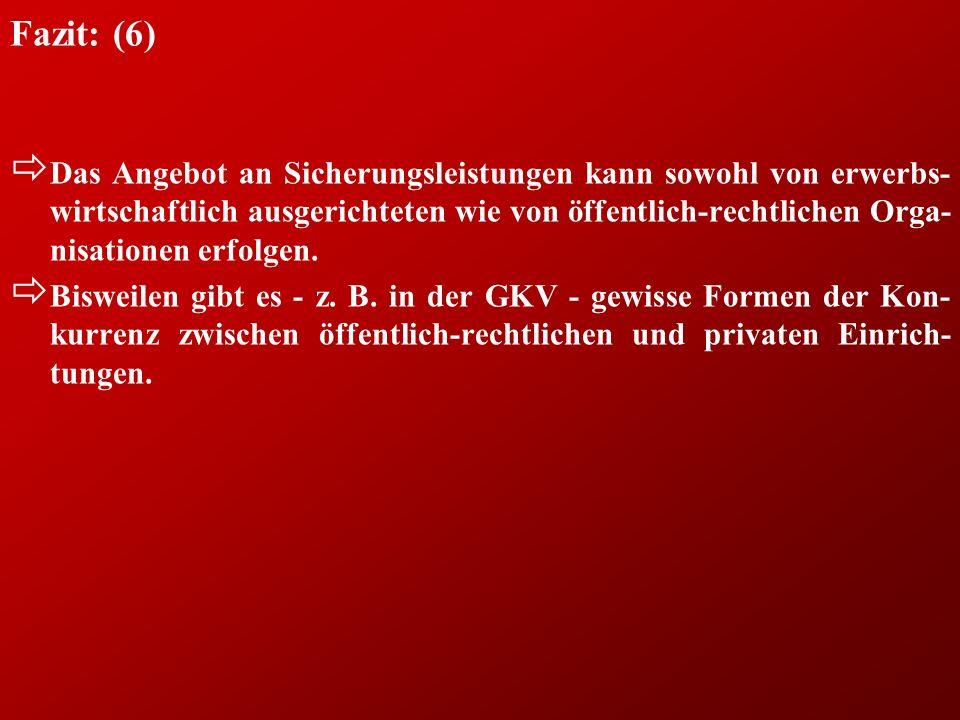 Fazit: (6) ð Das Angebot an Sicherungsleistungen kann sowohl von erwerbs- wirtschaftlich ausgerichteten wie von öffentlich-rechtlichen Orga- nisationen erfolgen.
