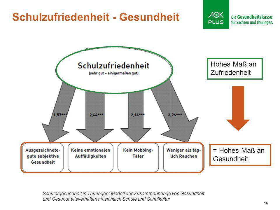16 Hohes Maß an Zufriedenheit = Hohes Maß an Gesundheit Schülergesundheit in Thüringen: Modell der Zusammenhänge von Gesundheit und Gesundheitsverhalt