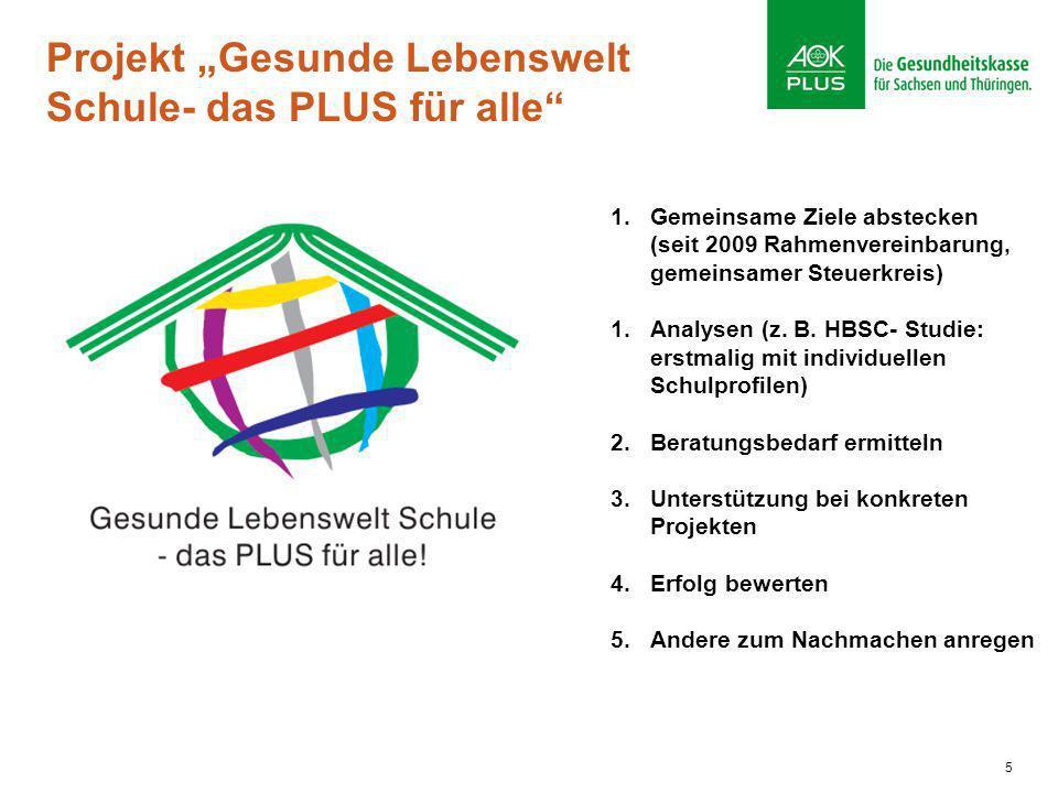 5 Projekt Gesunde Lebenswelt Schule- das PLUS für alle 1.Gemeinsame Ziele abstecken (seit 2009 Rahmenvereinbarung, gemeinsamer Steuerkreis) 1.Analysen