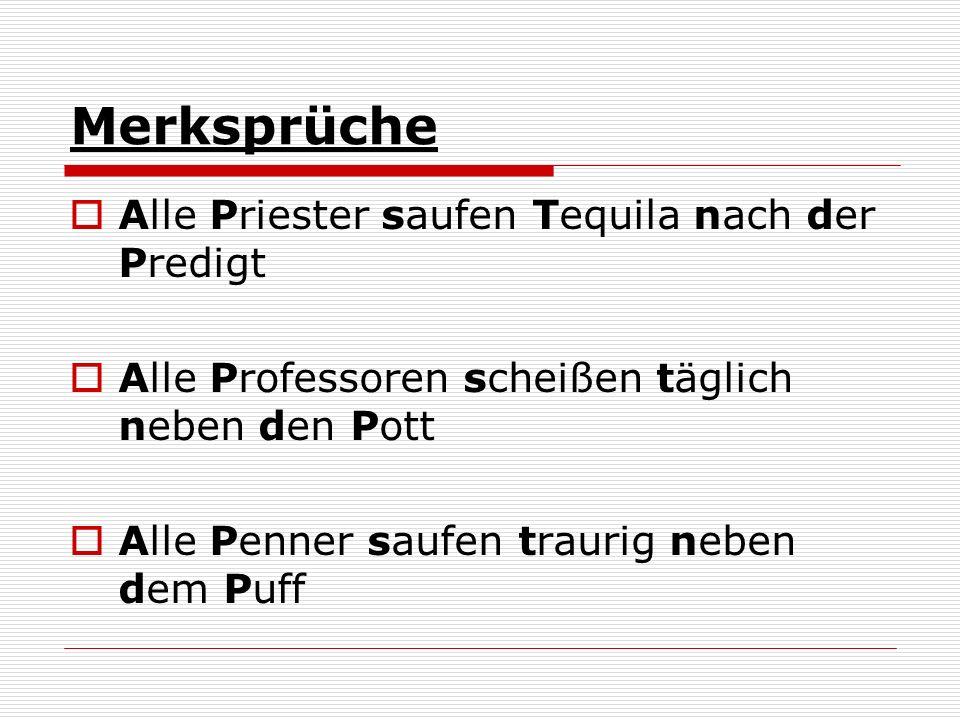 Merksprüche Alle Priester saufen Tequila nach der Predigt Alle Professoren scheißen täglich neben den Pott Alle Penner saufen traurig neben dem Puff