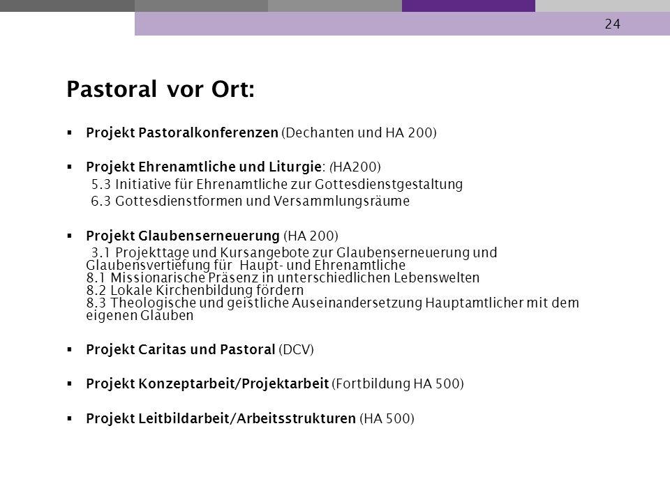24 Pastoral vor Ort: Projekt Pastoralkonferenzen (Dechanten und HA 200) Projekt Ehrenamtliche und Liturgie: (HA200) 5.3 Initiative für Ehrenamtliche z