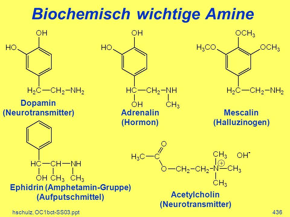 hschulz, OC1bct-SS03.ppt436 Biochemisch wichtige Amine Dopamin (Neurotransmitter) Adrenalin (Hormon) Mescalin (Halluzinogen) Ephidrin (Amphetamin-Grup