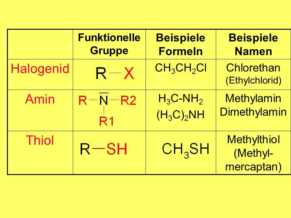 H 3 C-NH 2 (H 3 C) 2 NH CH 3 CH 2 Cl Beispiele Formeln Methylthiol (Methyl- mercaptan) Thiol Methylamin Dimethylamin Amin Chlorethan (Ethylchlorid) Halogenid Beispiele Namen Funktionelle Gruppe
