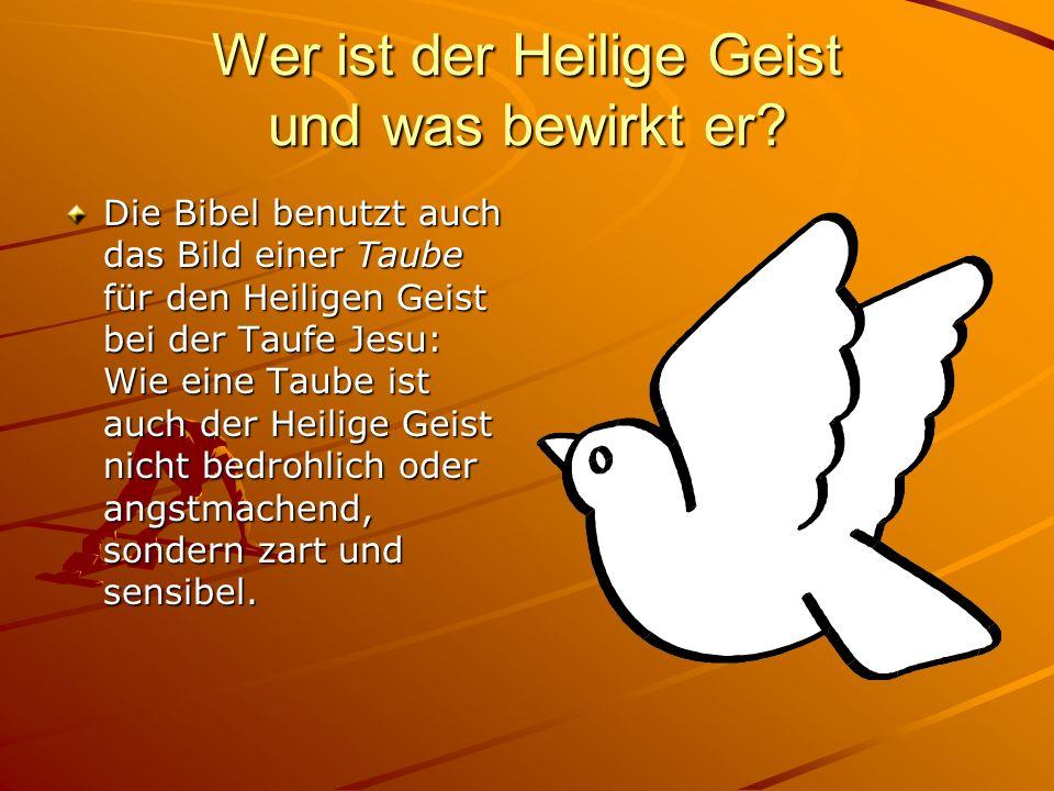 Wer ist der Heilige Geist und was bewirkt er? Die Bibel benutzt auch das Bild einer Taube für den Heiligen Geist bei der Taufe Jesu: Wie eine Taube is