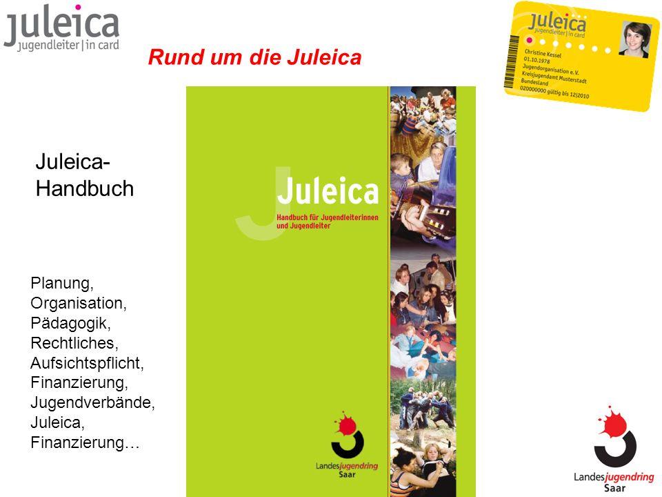 Juleica- Handbuch Rund um die Juleica Planung, Organisation, Pädagogik, Rechtliches, Aufsichtspflicht, Finanzierung, Jugendverbände, Juleica, Finanzie