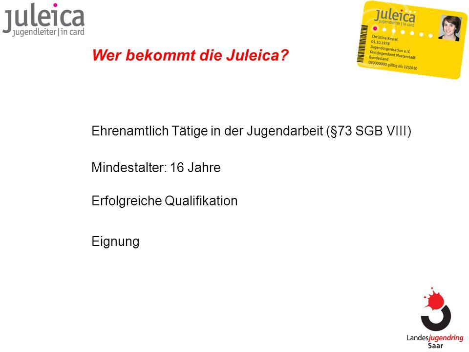 Juleica- Handbuch Rund um die Juleica Planung, Organisation, Pädagogik, Rechtliches, Aufsichtspflicht, Finanzierung, Jugendverbände, Juleica, Finanzierung…