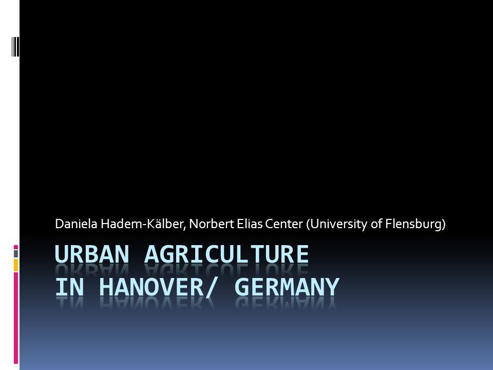 Daniela Hadem-Kälber, Norbert Elias Center (University of Flensburg)
