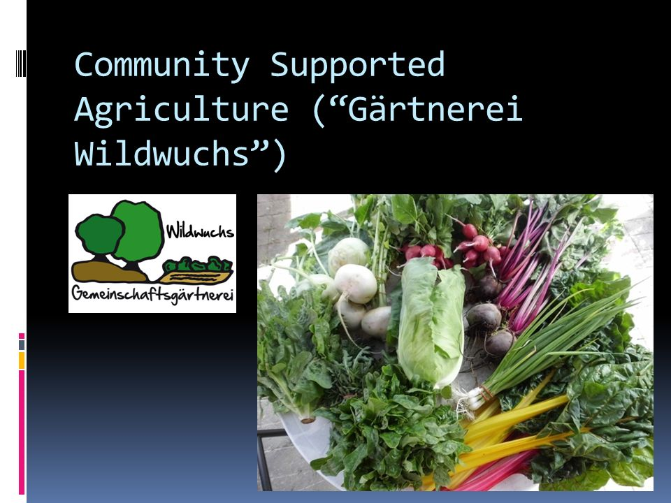 Community Supported Agriculture (Gärtnerei Wildwuchs)
