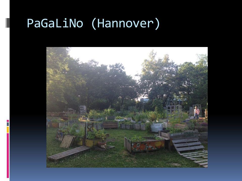 PaGaLiNo (Hannover)