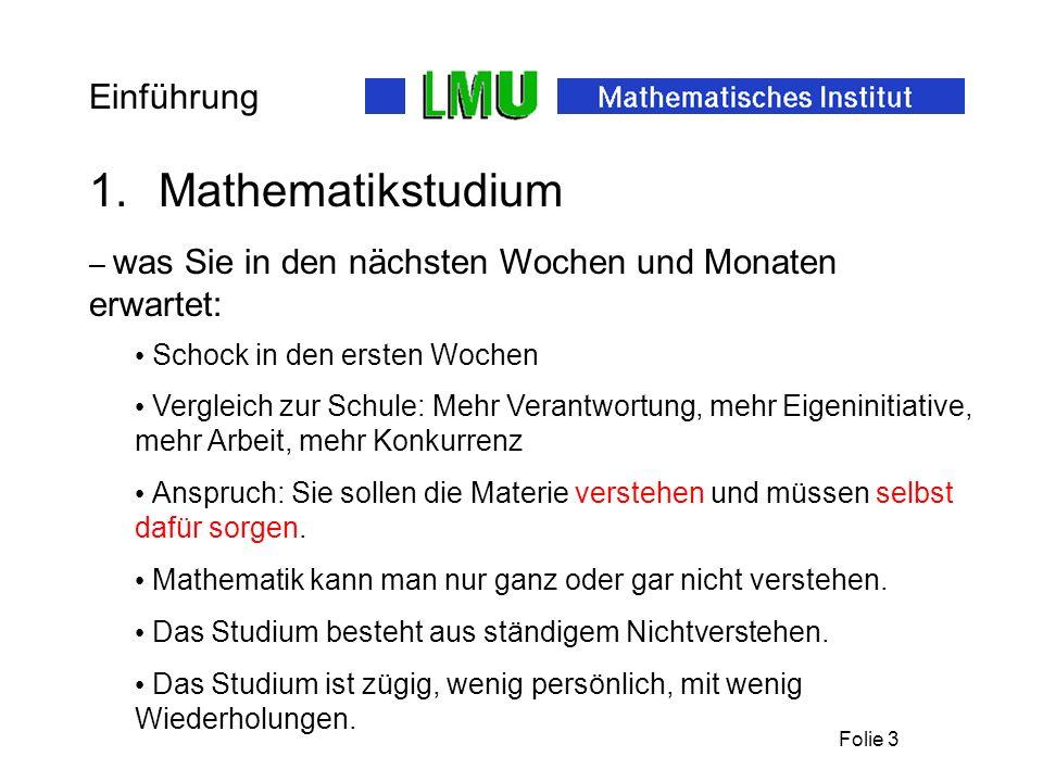 Folie 3 Einführung 1.Mathematikstudium – was Sie in den nächsten Wochen und Monaten erwartet: Das Studium besteht aus ständigem Nichtverstehen.