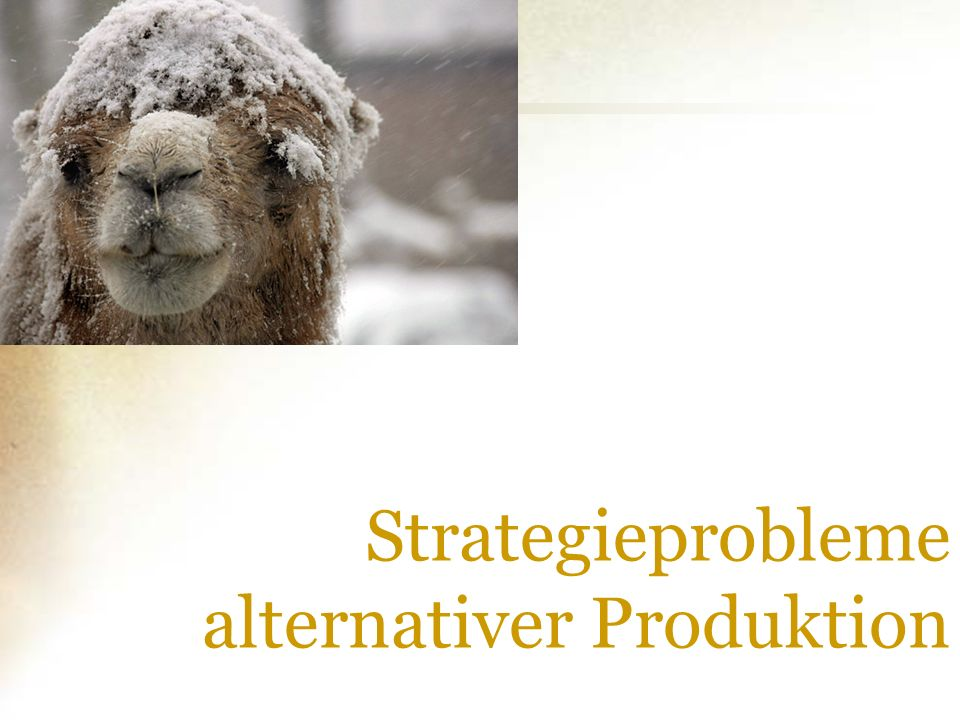 Strategieprobleme alternativer Produktion