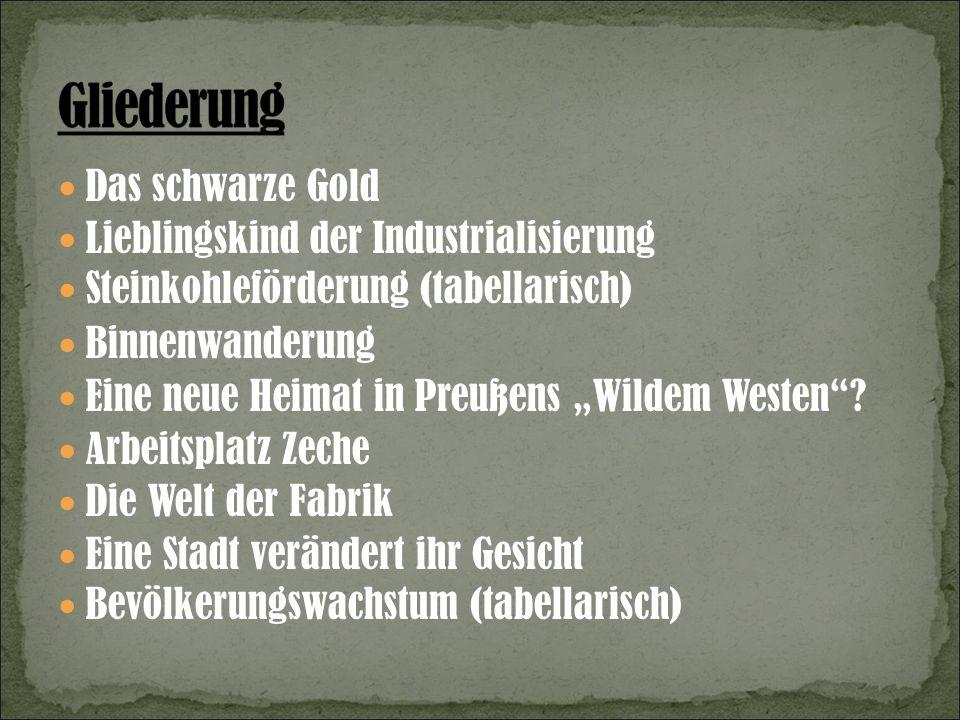Das schwarze Gold Lieblingskind der Industrialisierung Steinkohleförderung (tabellarisch) Binnenwanderung Eine neue Heimat in Preußens Wildem Westen.