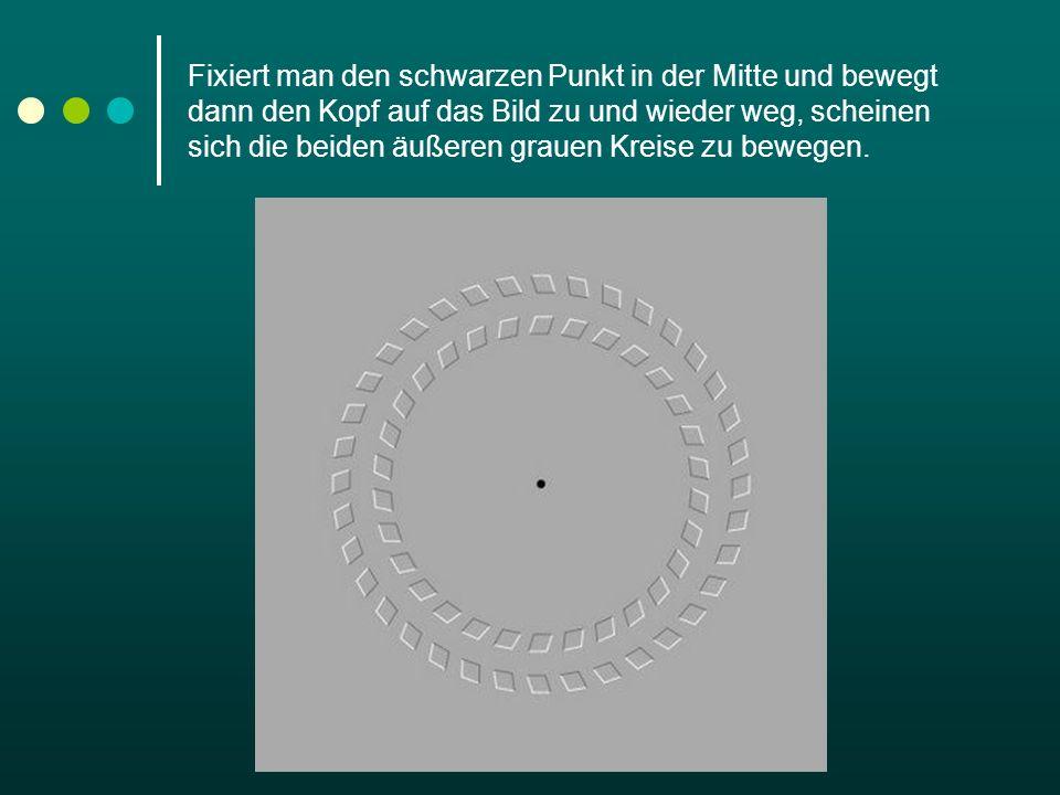 Fixiert man den schwarzen Punkt in der Mitte und bewegt dann den Kopf auf das Bild zu und wieder weg, scheinen sich die beiden äußeren grauen Kreise z