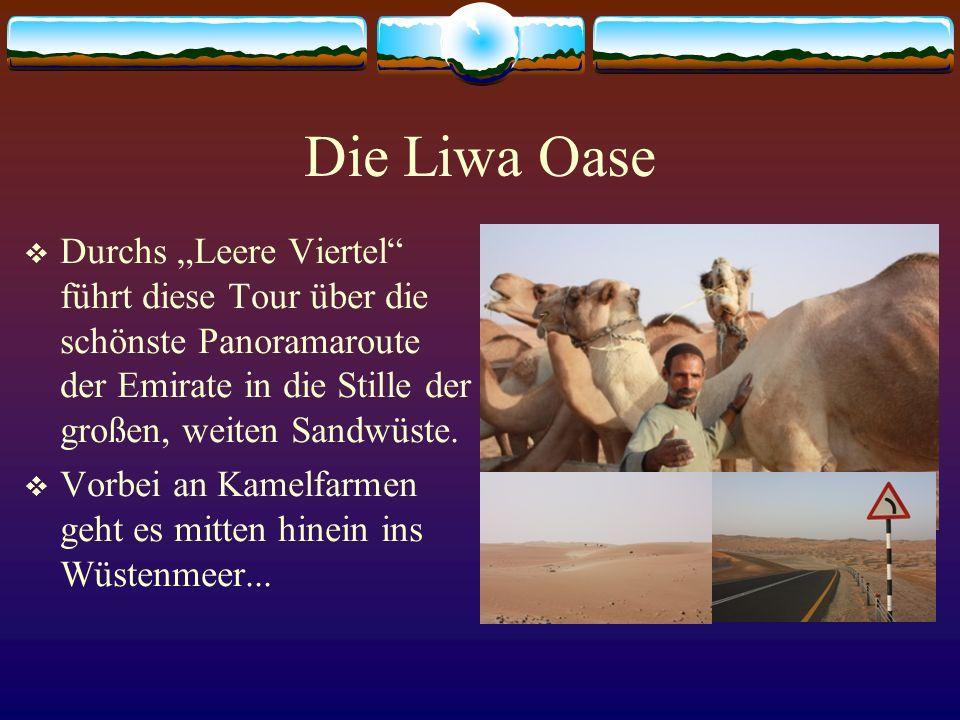 Die Liwa Oase Durchs Leere Viertel führt diese Tour über die schönste Panoramaroute der Emirate in die Stille der großen, weiten Sandwüste. Vorbei an