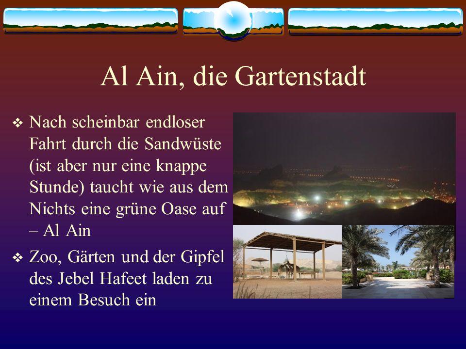 Al Ain, die Gartenstadt Nach scheinbar endloser Fahrt durch die Sandwüste (ist aber nur eine knappe Stunde) taucht wie aus dem Nichts eine grüne Oase