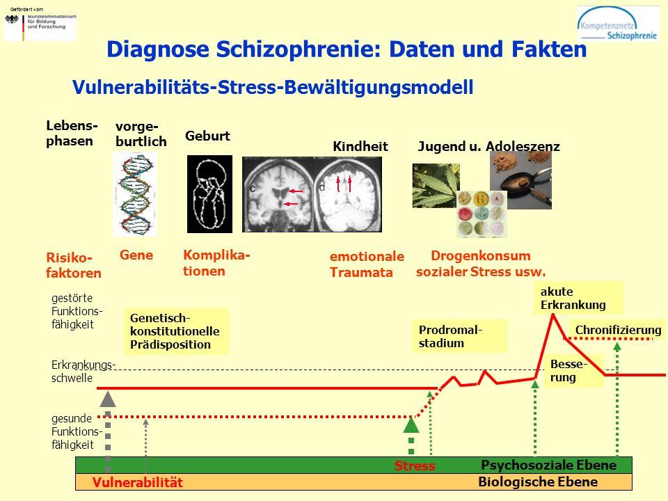 Gefördert vom Diagnose Schizophrenie: Daten und Fakten vorge- burtlich Gene Biologische Ebene Psychosoziale Ebene Genetisch- konstitutionelle Prädisposition gestörte Funktions- fähigkeit Erkrankungs- schwelle gesunde Funktions- fähigkeit Vulnerabilität Prodromal- stadium Stress Chronifizierung Komplika- tionen Drogenkonsum sozialer Stress usw.