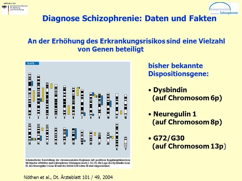 Gefördert vom Diagnose Schizophrenie: Daten und Fakten bisher bekannte Dispositionsgene: Dysbindin (auf Chromosom 6p) Neuregulin 1 (auf Chromosom 8p)