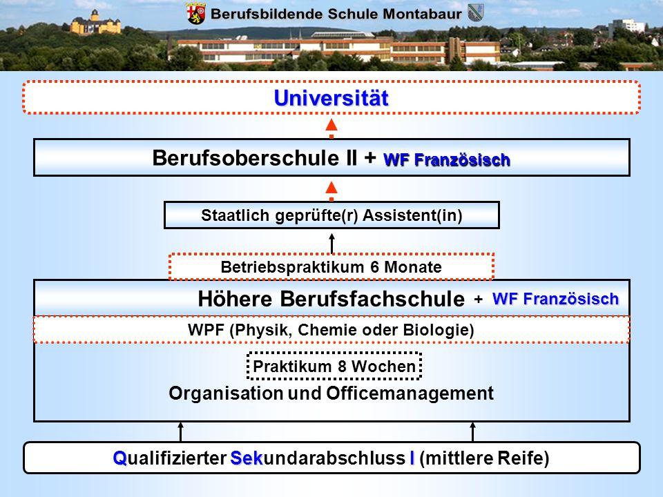 QSekI Qualifizierter Sekundarabschluss I (mittlere Reife) Höhere Berufsfachschule Fachrichtung Organisation und Officemanagement WPF (Physik, Chemie o