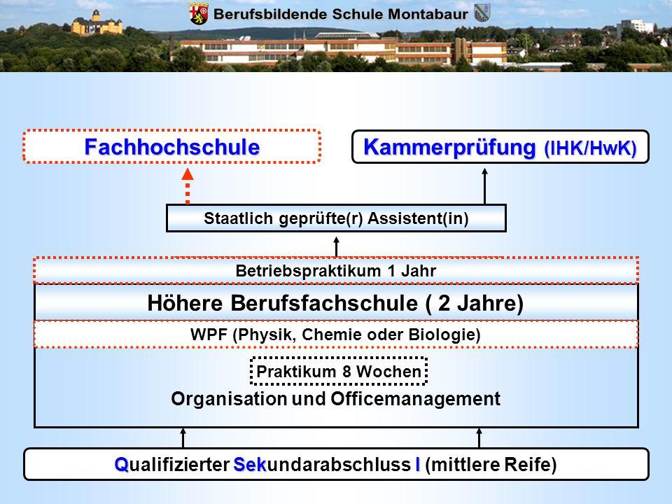 QSekI Qualifizierter Sekundarabschluss I (mittlere Reife) Höhere Berufsfachschule ( 2 Jahre) Fachrichtung Organisation und Officemanagement WPF (Physi