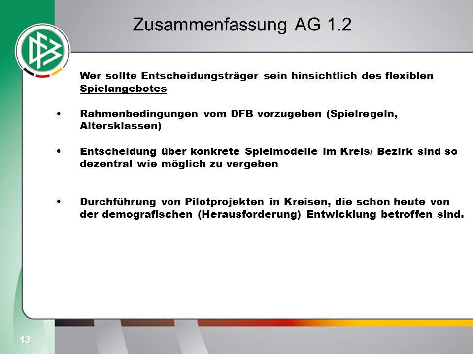 13 Zusammenfassung AG 1.2 Wer sollte Entscheidungsträger sein hinsichtlich des flexiblen Spielangebotes Rahmenbedingungen vom DFB vorzugeben (Spielreg