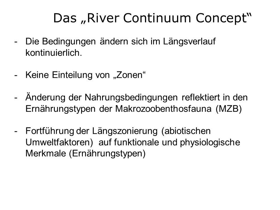 Das River Continuum Concept -Die Bedingungen ändern sich im Längsverlauf kontinuierlich. -Keine Einteilung von Zonen -Änderung der Nahrungsbedingungen