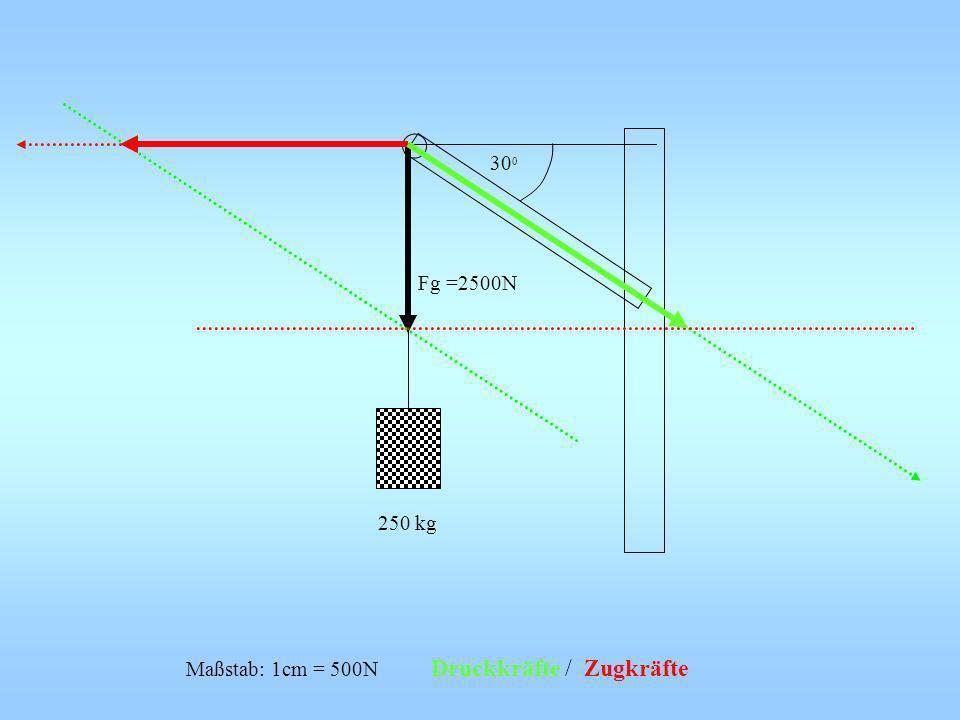 250 kg Fg =2500N Maßstab: 1cm = 500N Druckkräfte / Zugkräfte 30 0