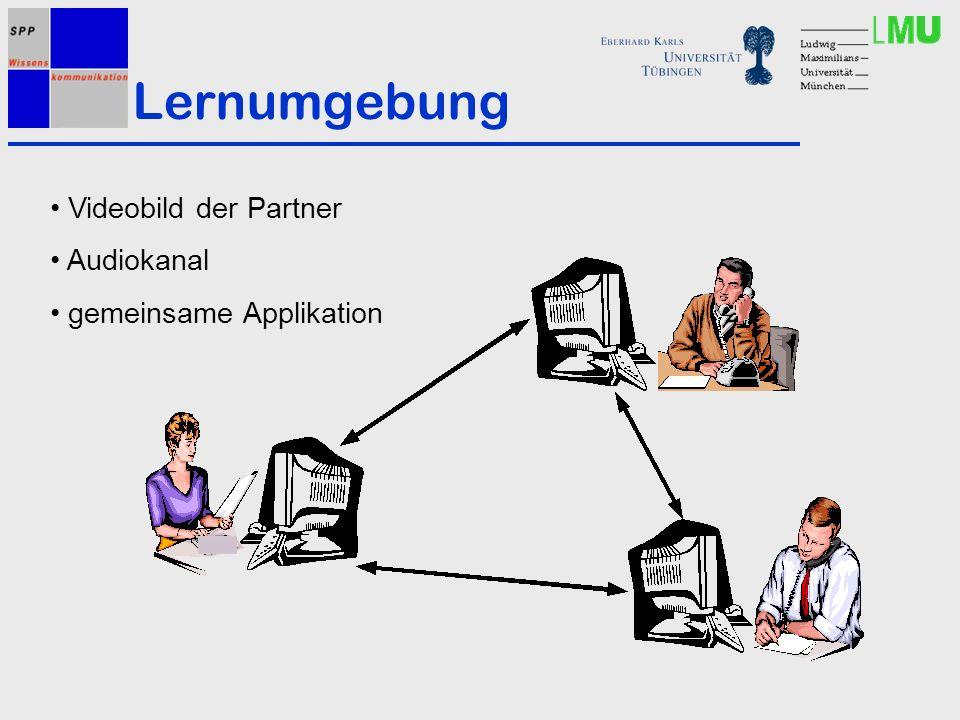 Lernumgebung Videobild der Partner Audiokanal gemeinsame Applikation