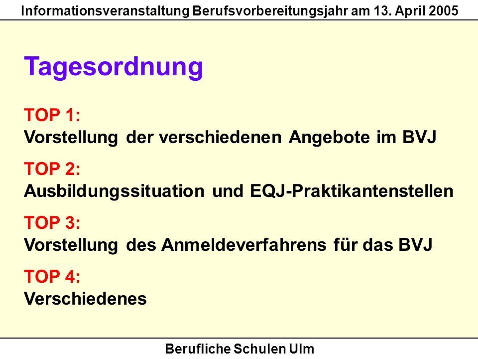 Berufliche Schulen Ulm Informationsveranstaltung Berufsvorbereitungsjahr am 13. April 2005 Tagesordnung TOP 1: Vorstellung der verschiedenen Angebote