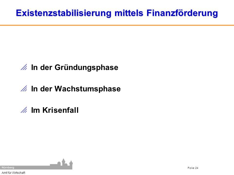 Amt für Wirtschaft Folie: 24 Existenzstabilisierung mittels Finanzförderung In der Gründungsphase In der Wachstumsphase Im Krisenfall