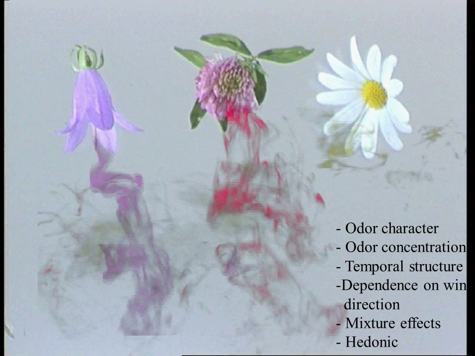 - Odor character - Odor concentration - Temporal structure -Dependence on wind direction - Mixture effects - Hedonic