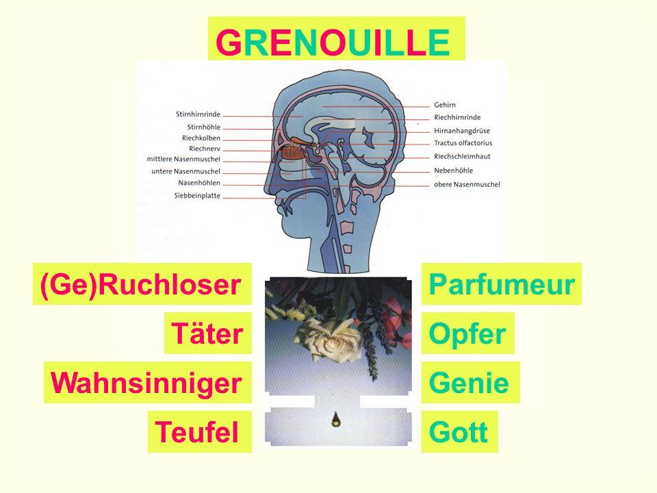 7. Stunde Denkmal Grenouille: Erarbeitung einer (power)- pointierten Darstellung des Charak- ters der Haupt- person Partnerarbeit im Computer- raum: E
