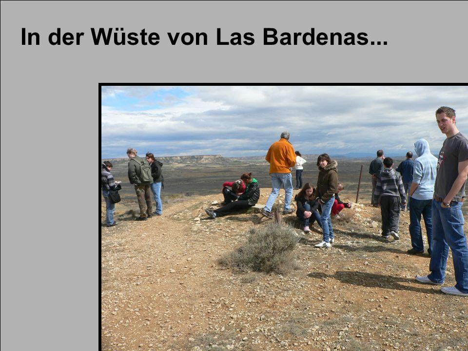 In der Wüste von Las Bardenas...