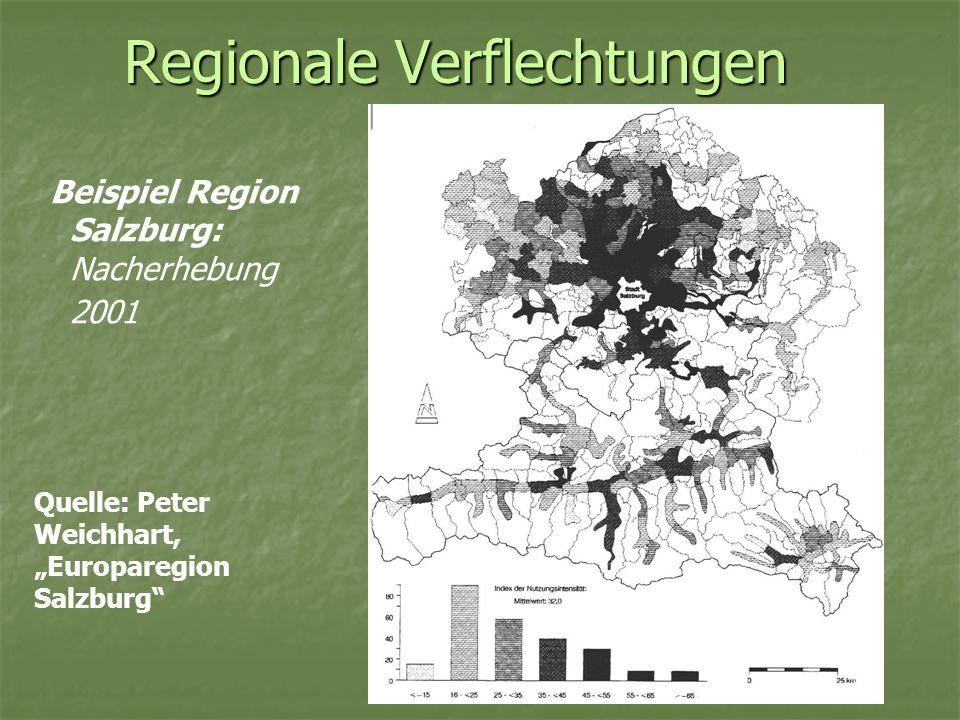 Regionale Verflechtungen Beispiel Region Salzburg: Zwecke der Besuche Quelle: Peter Weichhart, Europaregion Salzburg