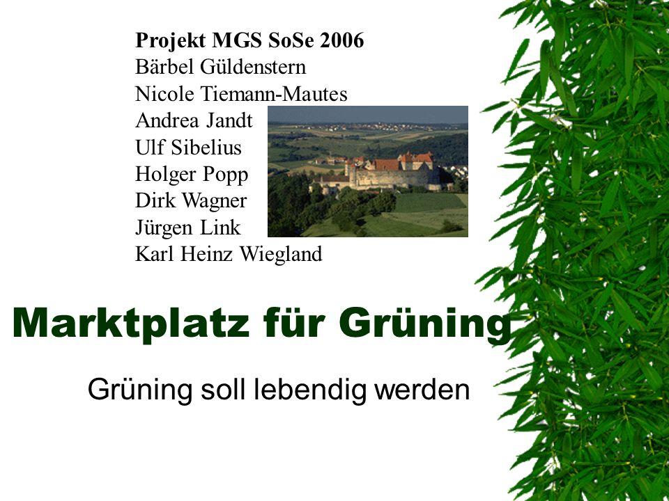 Marktplatz für Grüning Grüning soll lebendig werden Projekt MGS SoSe 2006 Bärbel Güldenstern Nicole Tiemann-Mautes Andrea Jandt Ulf Sibelius Holger Po