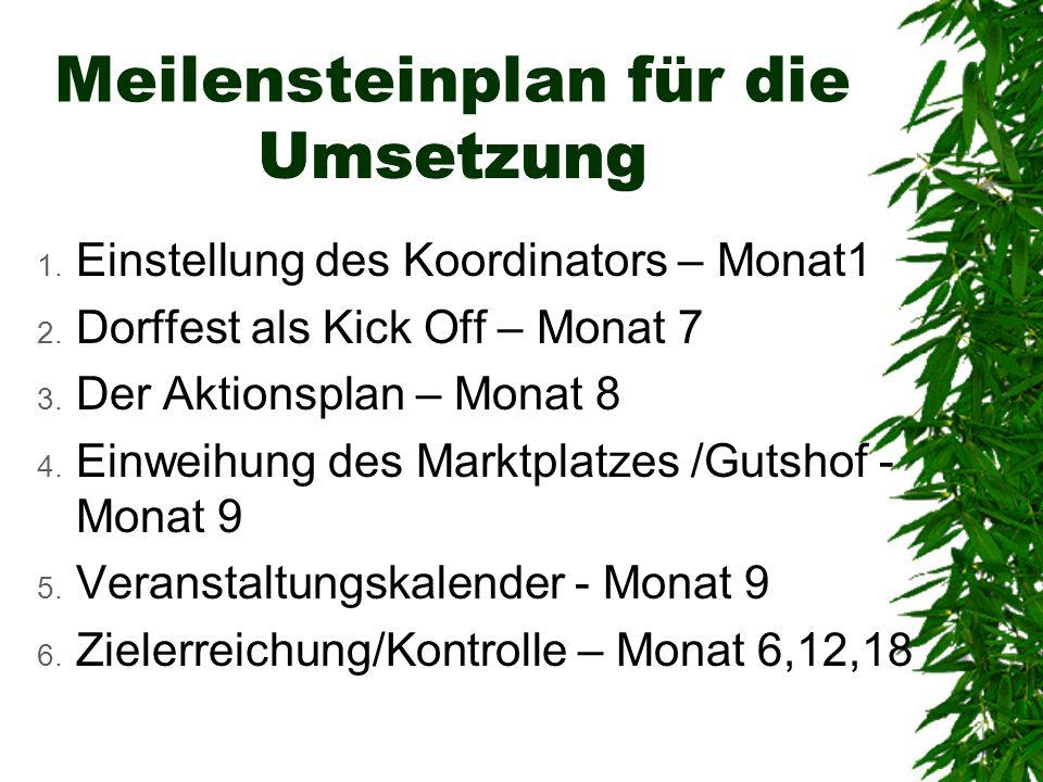Umsetzung 1. Einstellung des Koordinators – Monat1 2. Dorffest als Kick Off – Monat 7 3. Der Aktionsplan – Monat 8 4. Einweihung des Marktplatzes /Gut
