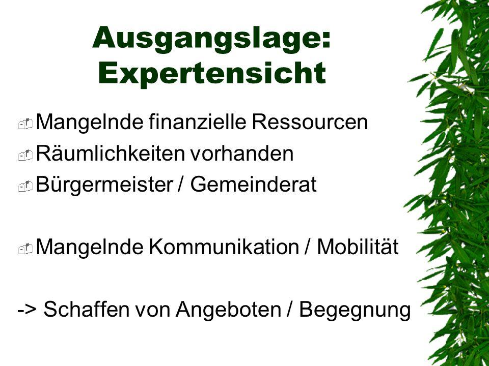 Ausgangslage: Expertensicht Mangelnde finanzielle Ressourcen Räumlichkeiten vorhanden Bürgermeister / Gemeinderat Mangelnde Kommunikation / Mobilität