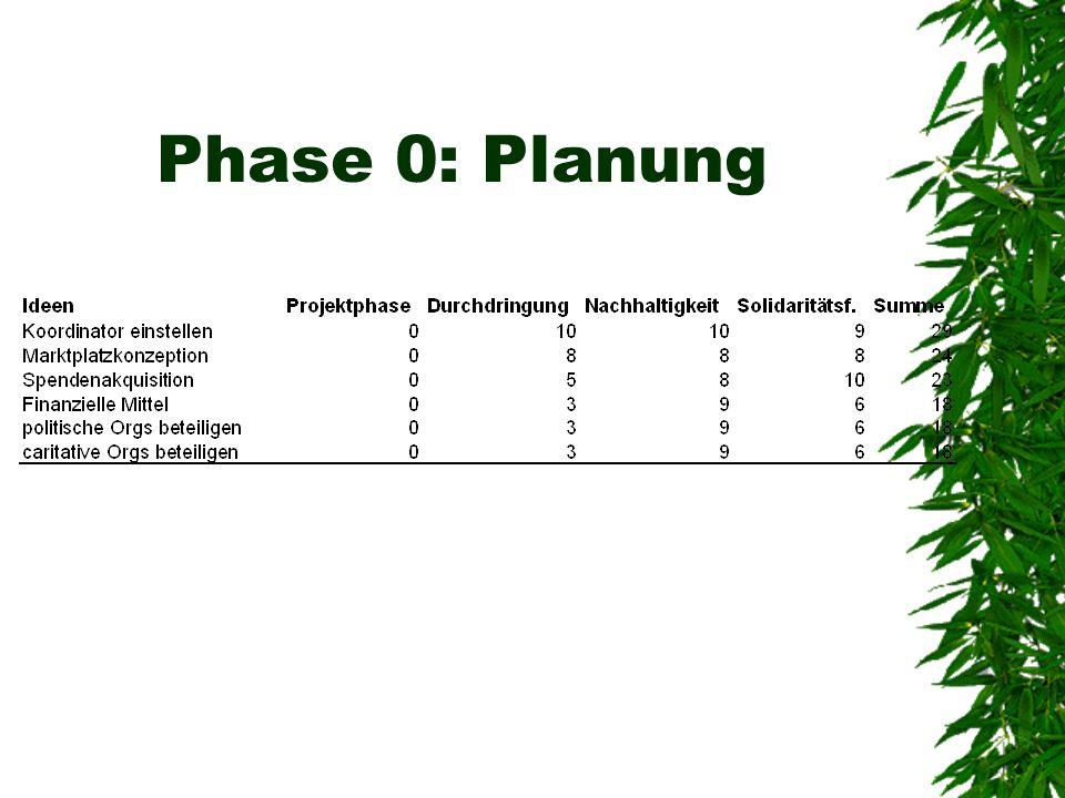 Phase 0: Planung
