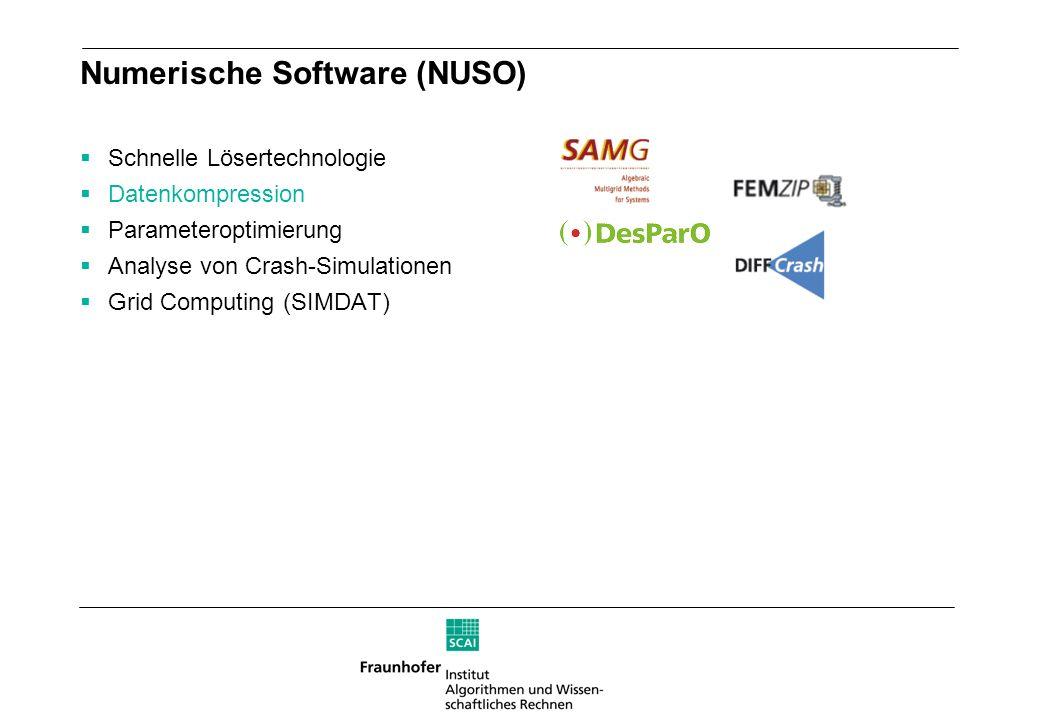 Numerische Software (NUSO) Schnelle Lösertechnologie Datenkompression Parameteroptimierung Analyse von Crash-Simulationen Grid Computing (SIMDAT)