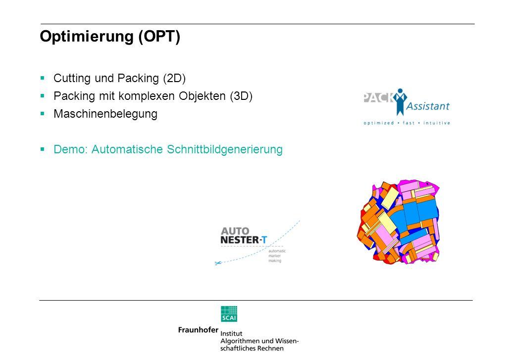 Optimierung (OPT) Cutting und Packing (2D) Packing mit komplexen Objekten (3D) Maschinenbelegung Demo: Automatische Schnittbildgenerierung